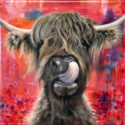 Highland Cow Brian Gift Magnet Pankhurst Cards and Gifts