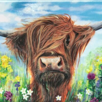 Highland Cow Hamish Gift Magnet Pankhurst Cards and Gifts