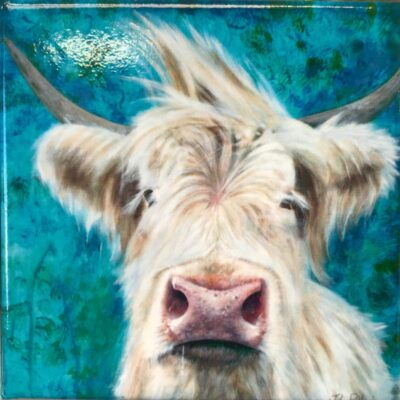 Highland Cow Patrick Magnet Gift Pankhurst Cards and Gifts