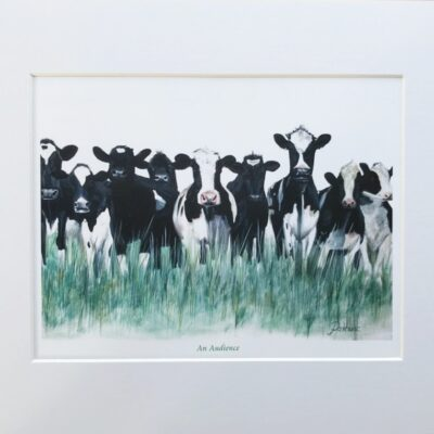 An Audience Cow Animal Art Print Gift Pankhurst Cards and Gifts