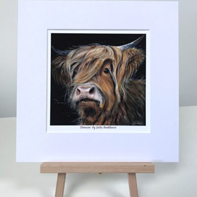Highland Cow Duncan Art Pankhurst Cards and Gifts
