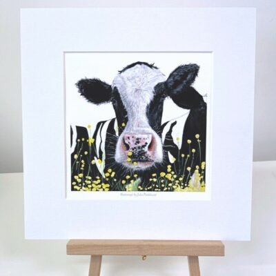 Buttercup Friesian Cow Painting mini print gift Art Pankhurst Cards and Gifts